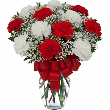 12 Red & White Carnations