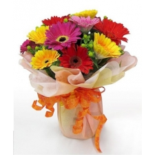 12 mix color gerbera