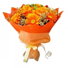 12 Orange Gerberas Bouquet