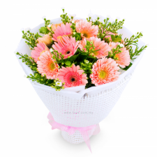 12 Pink Gerberas in Bouquet