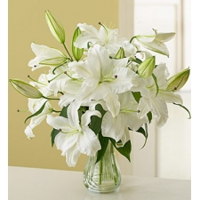 6 Stems of White Lilies