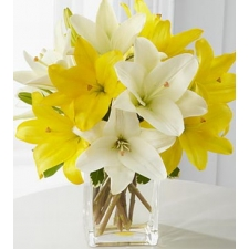 ​10 Yellow and White Lily
