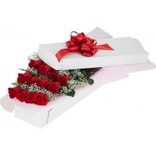 12 Red Roses with Green Arrangement in Box