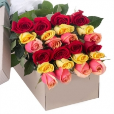 24 Mixed Color Roses in Box