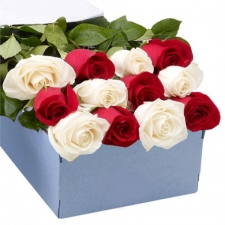 12 Forever Love with Mixed Rose in Box