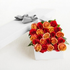 24 Mixed Color Roses in a Box