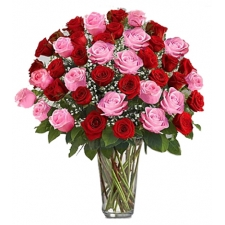 36 Red and Pink Roses in Vase