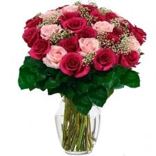 24 Red and Pink Roses in vase