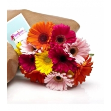Market Fresh Mixed Gerberas