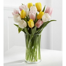 12 Beauty Mix Tulips