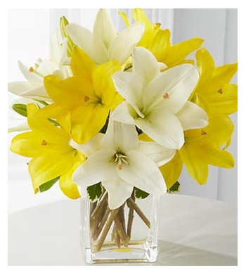 10 Yellow And White Lily Send To Japanjapanflowershops